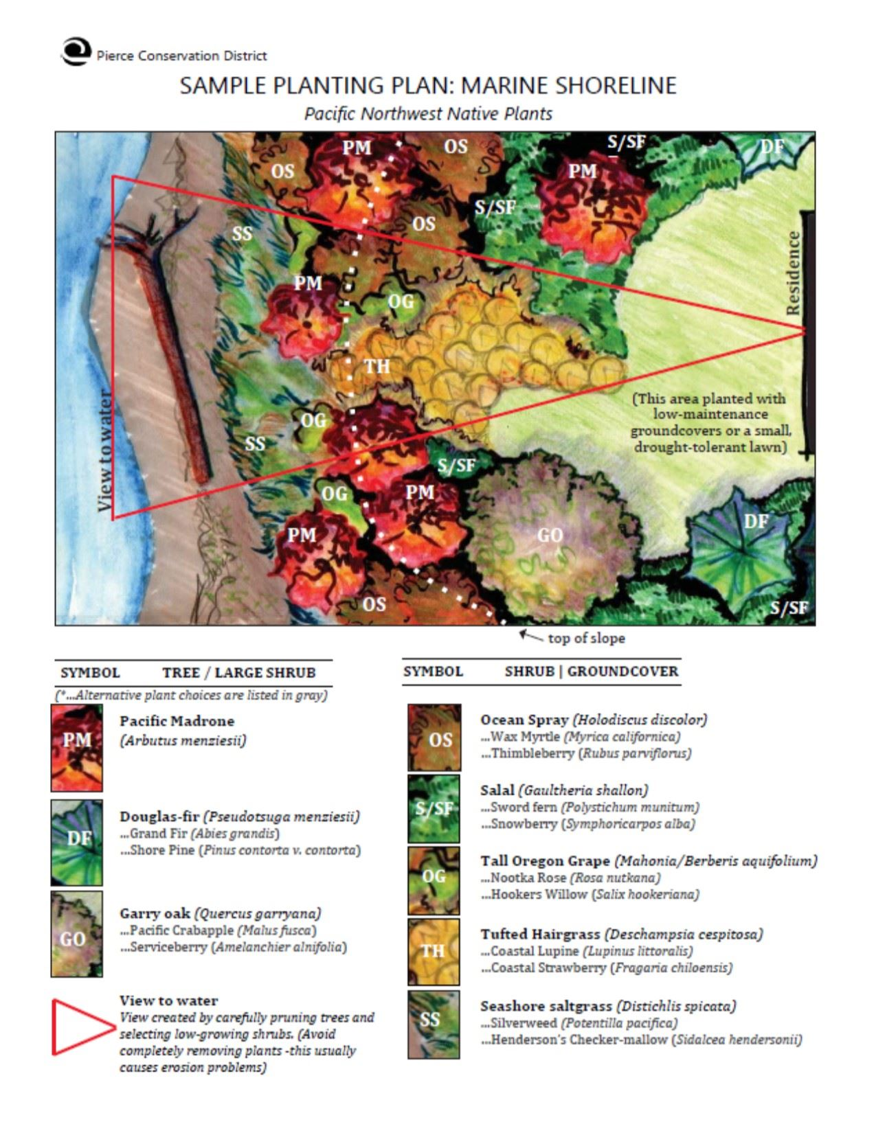 Sample Planting Plan_Marine Shorelines_Preview