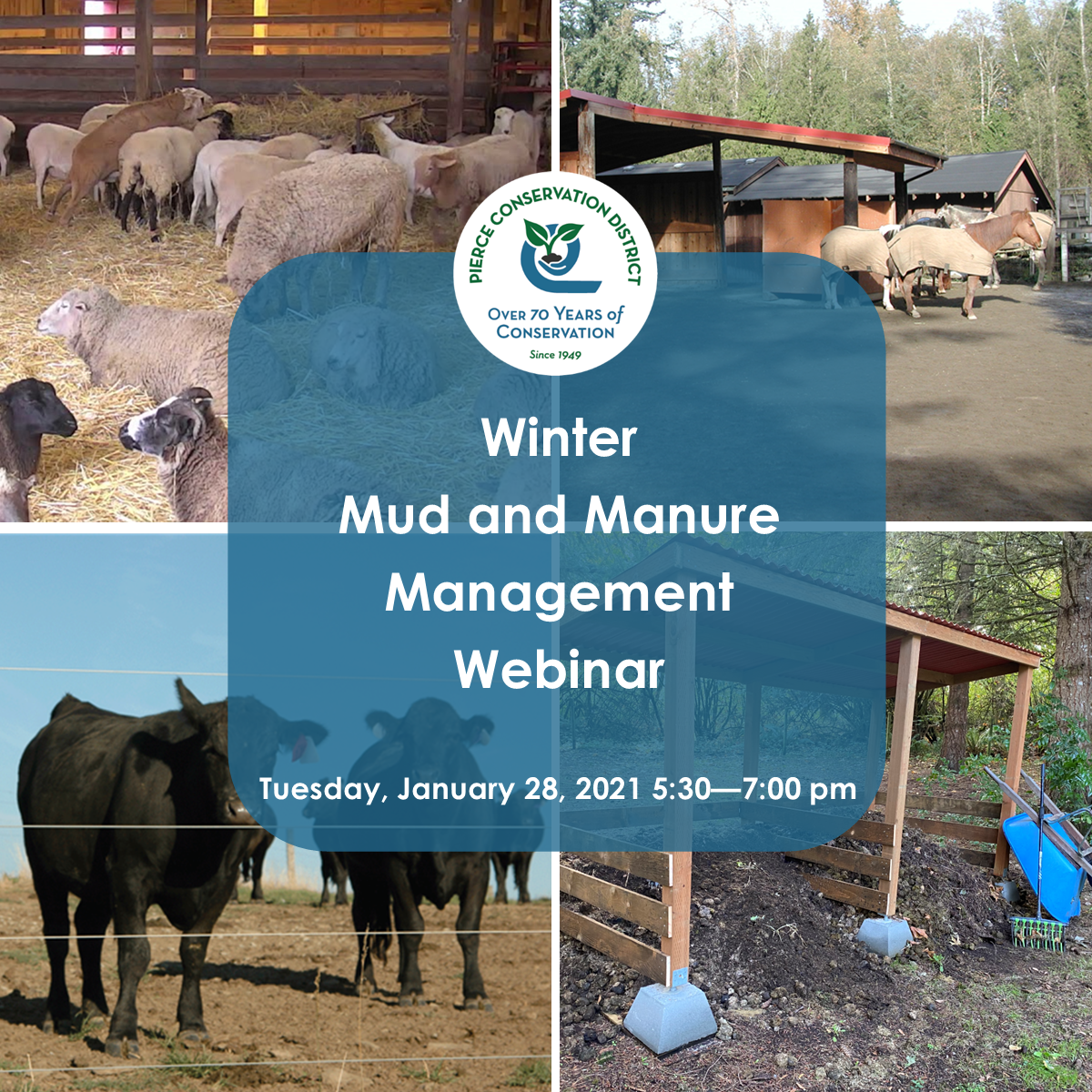Winter Mud and Manure Management Flyer January 2021 Option 1